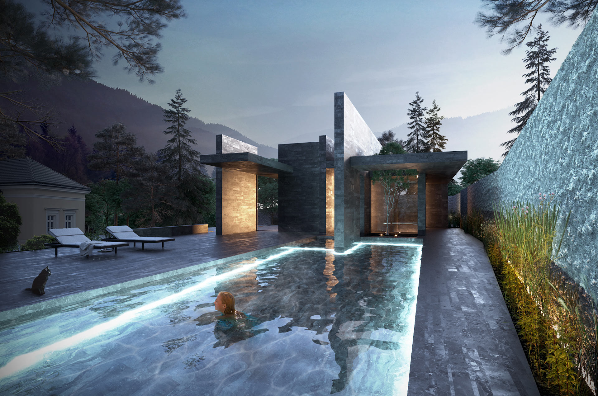 #wellness #pavilion #pool #rendering